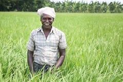 Indischer Mann, der Sichel und Ernten hält lizenzfreies stockbild