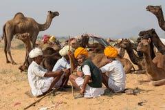Indischer Mann und Kamel in Pushkar, Indien Stockbild
