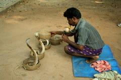 Indischer Schlangecharmeur Stockfoto