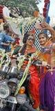 Indischer Swag stockfotos
