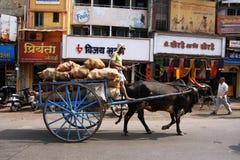 Indischer Wagen mit einem Stier auf der Straße Lizenzfreie Stockfotografie