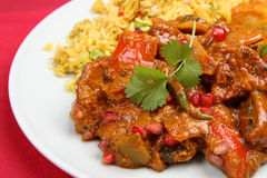 Indisches Curry-Abendessen Stockfoto