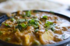Indisches paneer Curryabendessen überstieg mit grünen Blättern mit Reis herein Lizenzfreies Stockbild