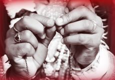 Indisk brudgum Holding Mangalsutra royaltyfri bild