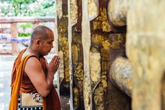 Indisk buddistisk munk som framme står och ber av det Bodhi trädet nära den Mahabodhi templet på Bodh Gaya, Bihar, Indien arkivbilder