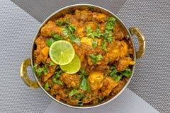 Indisk feg curry med indiska kryddor arkivbild