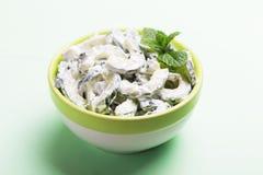 Indisk gurkaraita med yoghurt, mintkaramell, koriander Grekisk tzatzi Royaltyfri Bild