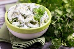 Indisk gurkaraita med yoghurt, mintkaramell, koriander Grekisk tzatzi Fotografering för Bildbyråer