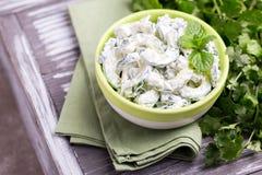 Indisk gurkaraita med yoghurt, mintkaramell, koriander Grekisk tzatzi Royaltyfria Foton