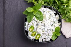 Indisk gurkaraita med yoghurt, mintkaramell, koriander Grekisk tzatzi Royaltyfri Fotografi