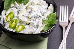 Indisk gurkaraita med yoghurt, mintkaramell, koriander Grekisk tzatzi Arkivfoto