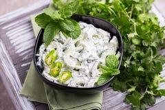 Indisk gurkaraita med yoghurt, mintkaramell, koriander Grekisk tzatzi Arkivbilder