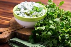 Indisk gurkaraita med yoghurt, mintkaramell, koriander Grekisk tzatzi Arkivbild