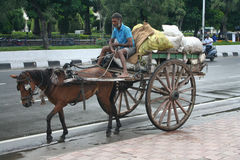 Indisk hästvagn i miljöinsatsen. Arkivbilder