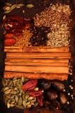 indisk krydda arkivfoton