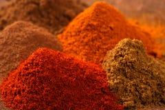 indisk krydda arkivbilder