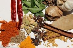 Indisk krydda Arkivbild