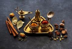 Indisk krydda, kryddigt och krydda royaltyfri fotografi