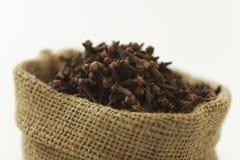 Indisk krydda-kryddnejlika royaltyfri bild