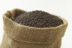 Indisk krydda-senap arkivfoton