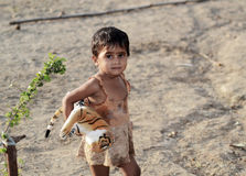 Indisk liten flicka med den välfyllda tigern Royaltyfri Fotografi