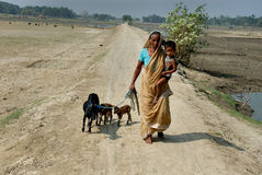 indisk livstidsby Royaltyfri Foto