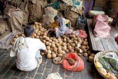 Indisk marknad, Kolkata, Indien Royaltyfria Bilder