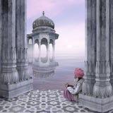 Indisk mist Arkivfoton