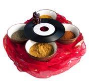 indisk musik Arkivfoto