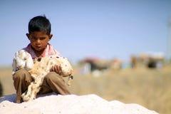 Indisk pojke med får Arkivbild