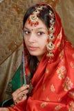 indisk saree Royaltyfri Bild