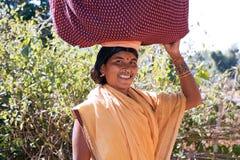 indisk stam- kvinna Royaltyfri Bild