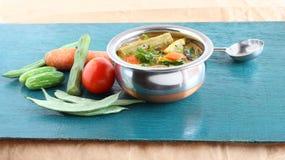 Indisk vegetarisk mat för trumpinneSambar Royaltyfri Bild