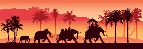 Indiska elefanter stock illustrationer