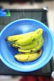 Indiska gröna bananer arkivfoton