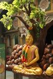 Indiska gudar och Buddhadiagram Royaltyfri Foto