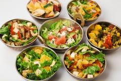 Indiska kokkonstsallader för strikt vegetarian och för vegetarian Arkivbilder
