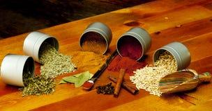 indiska kryddor Royaltyfria Bilder