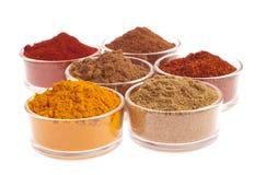 indiska kryddor Arkivfoto