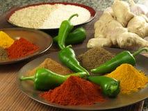 Indiska kryddor Royaltyfri Fotografi