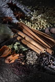 Indiska kryddor Royaltyfri Bild