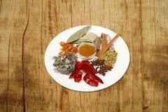 indiska kryddor Arkivfoton