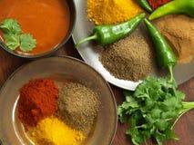 Indiska kryddor och dopp Royaltyfri Fotografi