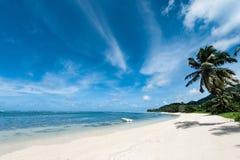 Indiska oceanenlågvatten i Seychellerna, Mahe Island Palmträdskugga på strandsanden royaltyfri bild