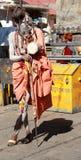 Indiska Sadhu. Royaltyfri Fotografi
