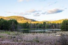 Indiskt damm i madamen Sherri Forest i New Hampshire Fotografering för Bildbyråer