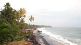 Indiskt hav stock video