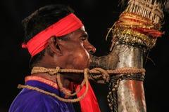 Indiskt stammusikinstrument Royaltyfria Bilder