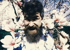Indivíduo com a careta na cara devido ao sol brilhante Homem com barba e bigode, moderno que levanta perto das flores da magnólia imagem de stock royalty free