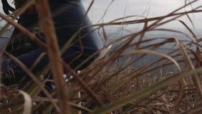 Indivíduo com uma menina que anda através de um campo vídeos de arquivo
